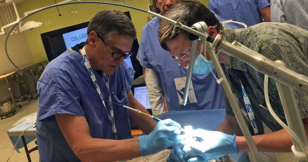 Dr. Godbold instructing a veterinary laser surgery course